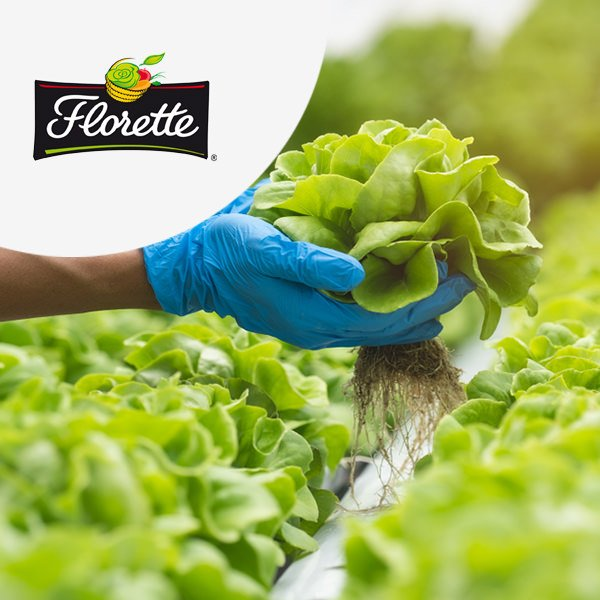 Florette choisit ADAX CPG & Food avec TVH Consulting